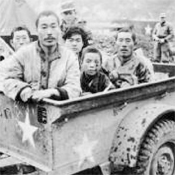 Prisoners, stragglers from North Korean People's Armyunits, are brought in by jeep trailer. Even the child had been put to work, serving as an ammunition carrier. Photo courtesy of Popperfoto.